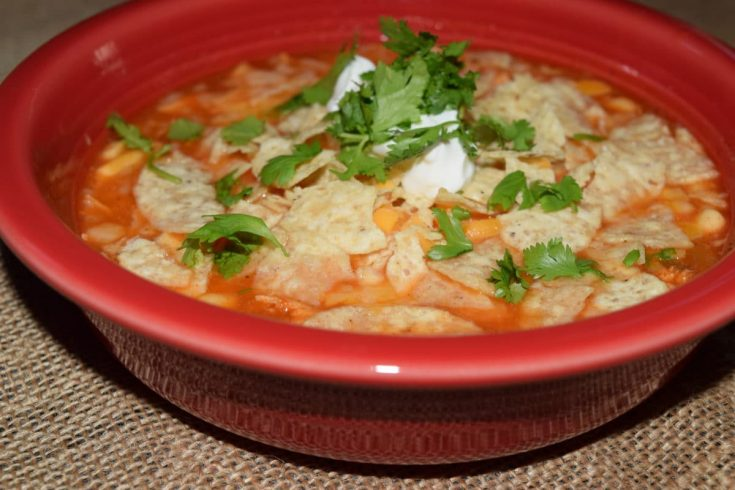 Tortilla Chicken Soup