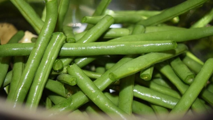 Freshly Trimmed Green Beans in Instant Pot